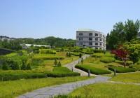 Lorem University of Technology