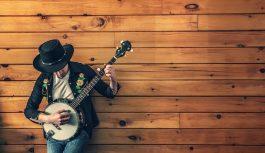 Oriental Instruments – Setar Instrument